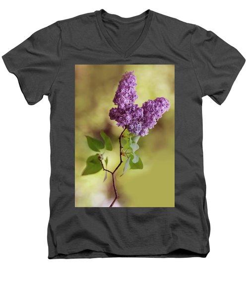 Branch Of Fresh Violet Lilac Men's V-Neck T-Shirt