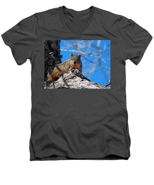 Branch Squirrel Men's V-Neck T-Shirt