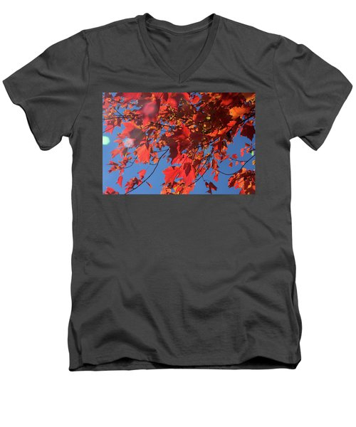 Branches Of Red Maple Leaves On Clear Sky Background Men's V-Neck T-Shirt by Emanuel Tanjala