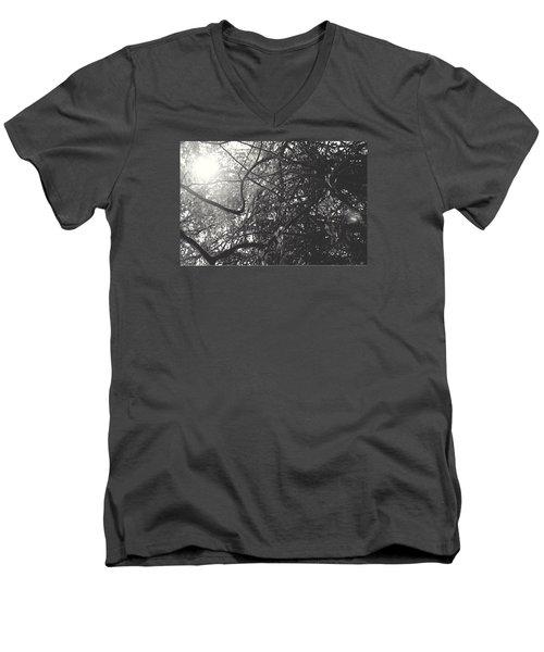 Branches Men's V-Neck T-Shirt by Sarah Boyd