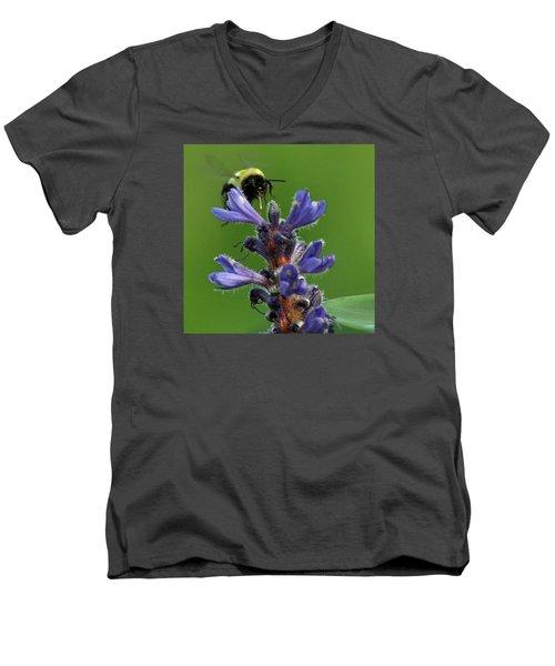 Men's V-Neck T-Shirt featuring the photograph Bumble Bee Breakfast by Glenn Gordon