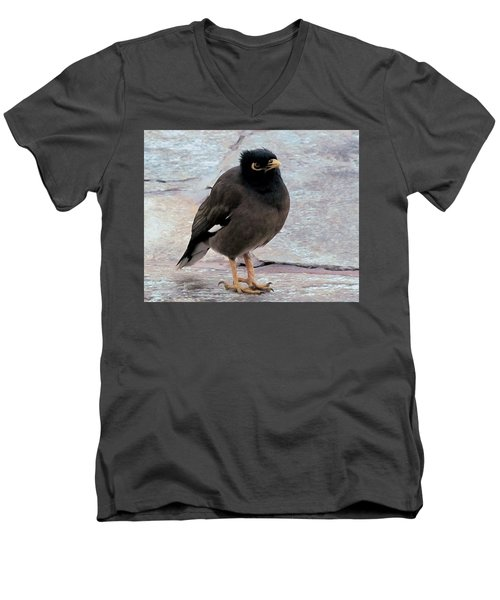 Breakfast Greeter, Maui Men's V-Neck T-Shirt by I'ina Van Lawick