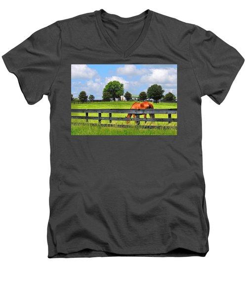 Breeding Beauties Men's V-Neck T-Shirt