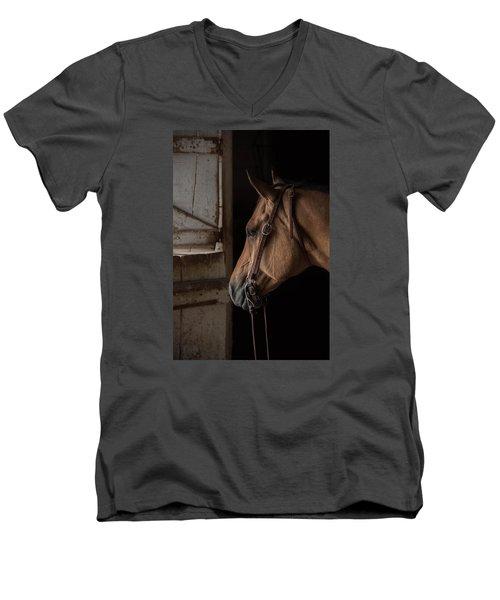 Bridled Men's V-Neck T-Shirt