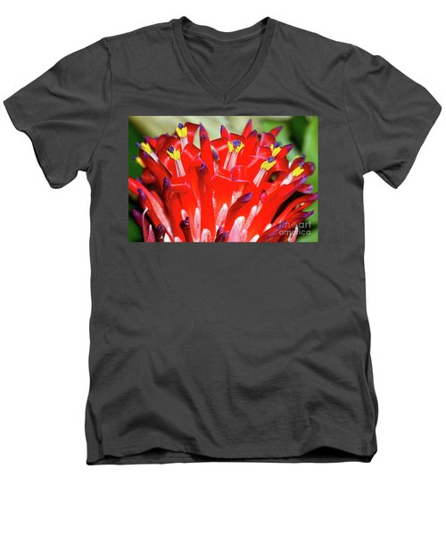 Men's V-Neck T-Shirt featuring the photograph Bright Blooming Bromeliad By Kaye Menner by Kaye Menner