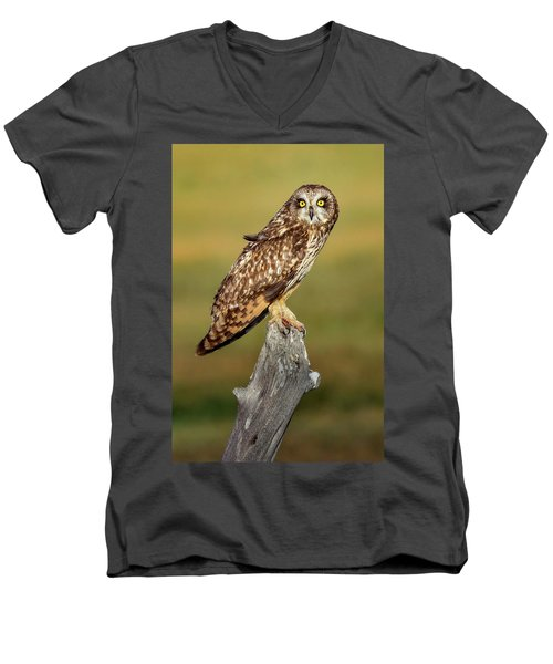 Bright-eyed Owl Men's V-Neck T-Shirt