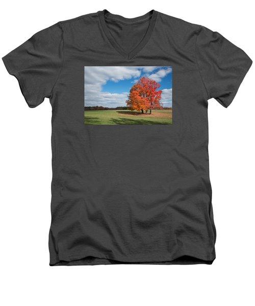 Bright Orange Tree In Va. Men's V-Neck T-Shirt