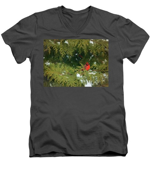 Bright Spot Men's V-Neck T-Shirt