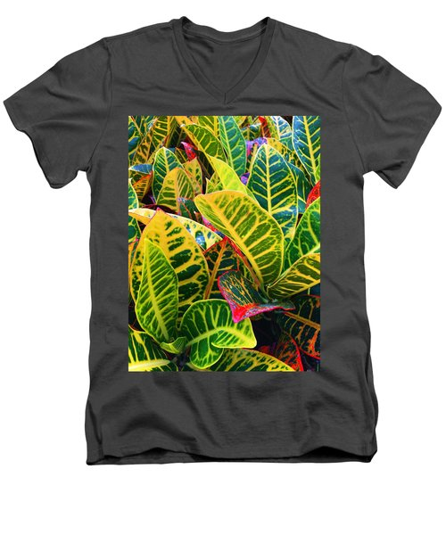Brilliant Crotons Men's V-Neck T-Shirt by Kay Gilley