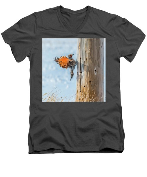 Brilliant Northern Flicker Woodpecker Men's V-Neck T-Shirt by Yeates Photography