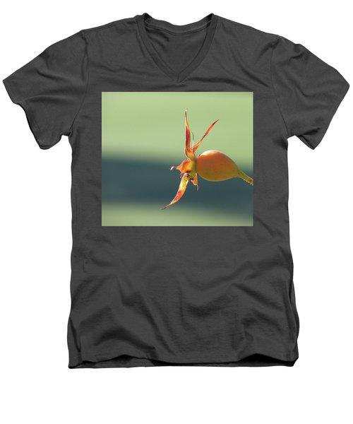 Brilliant Seed Pod Men's V-Neck T-Shirt