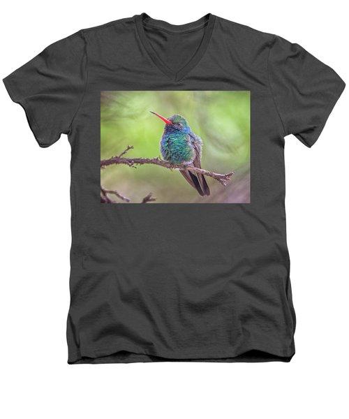 Broad-billed Hummingbird 3652 Men's V-Neck T-Shirt