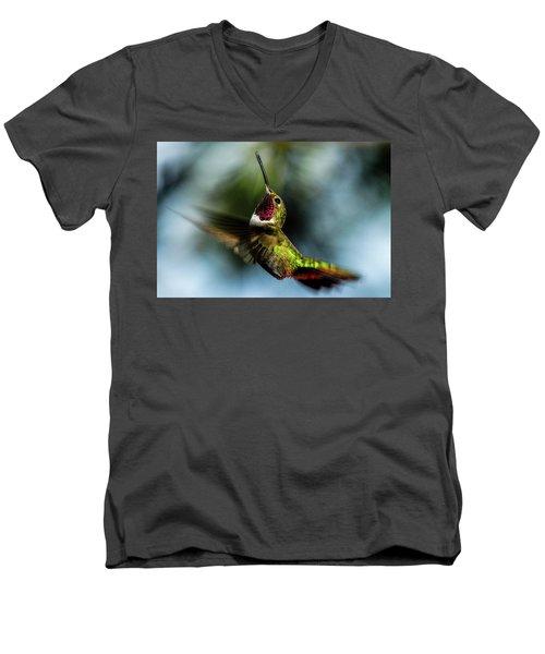 Broad-tailed Hummingbird In Flight Men's V-Neck T-Shirt