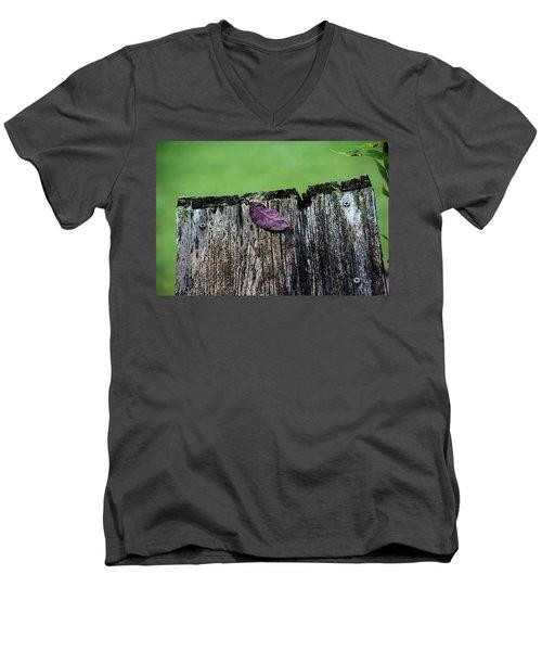 Brock's Leaf Men's V-Neck T-Shirt