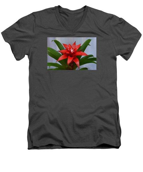 Bromeliad Men's V-Neck T-Shirt by Terence Davis