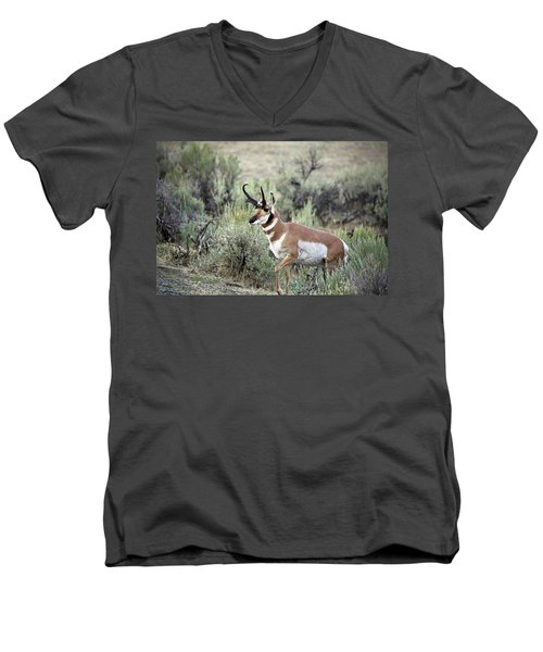 Pronghorn Buck Men's V-Neck T-Shirt