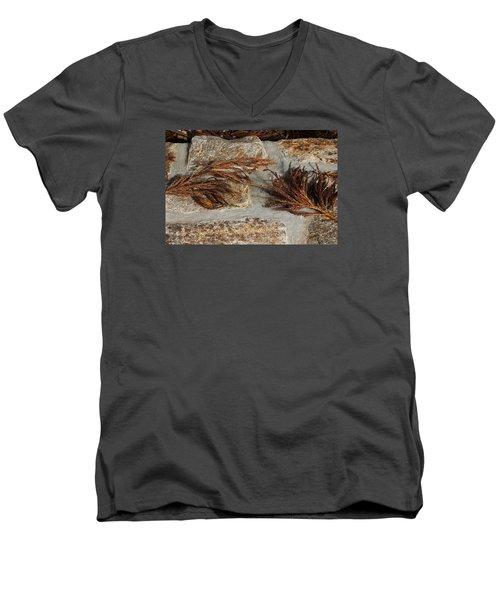 Men's V-Neck T-Shirt featuring the photograph Bronze Symmetry by Deborah  Crew-Johnson