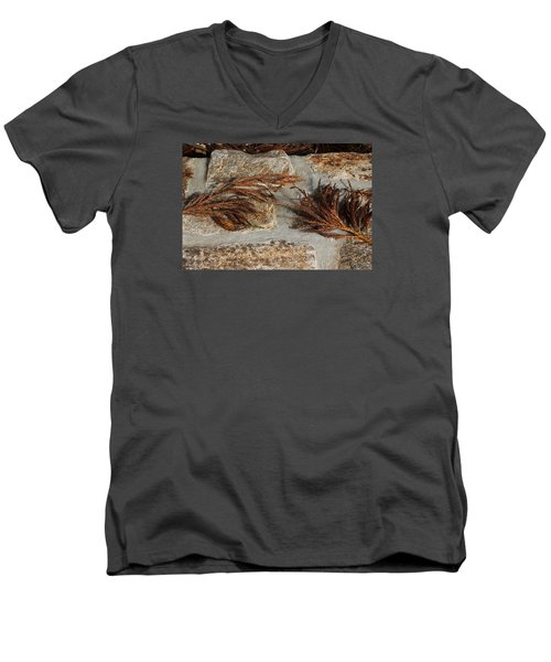 Bronze Symmetry Men's V-Neck T-Shirt