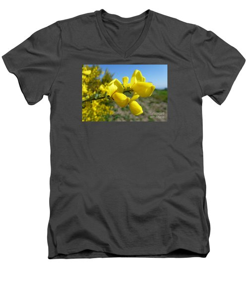 Broom In Bloom 4 Men's V-Neck T-Shirt