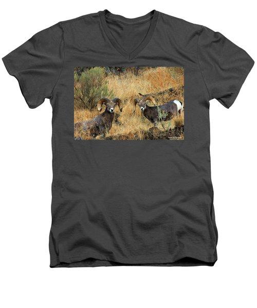Brothers Men's V-Neck T-Shirt by Steve Warnstaff