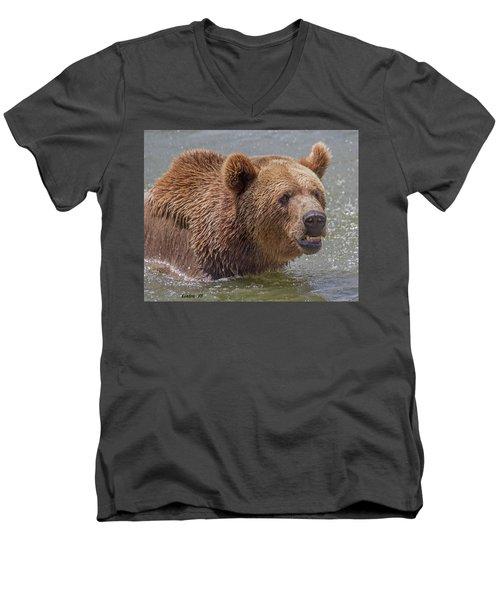 Brown Bear 10 Men's V-Neck T-Shirt