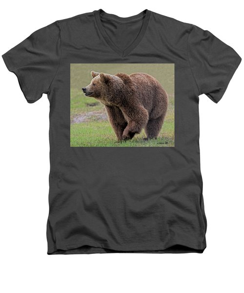Brown Bear 14.5 Men's V-Neck T-Shirt