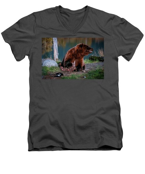 Brown Bear And Magpie Men's V-Neck T-Shirt