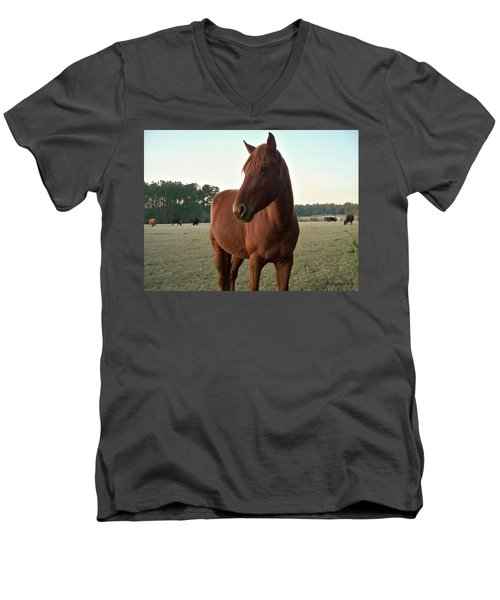 Men's V-Neck T-Shirt featuring the photograph Brown Beauty by Betty Northcutt