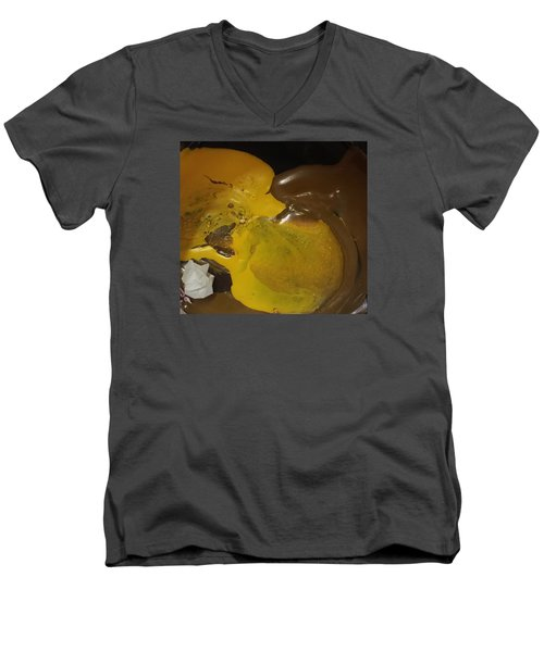 Brown Dolphin Eating A Lemon Men's V-Neck T-Shirt by Gyula Julian Lovas