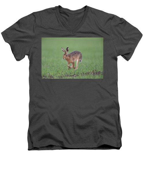Brown Hare Running Men's V-Neck T-Shirt