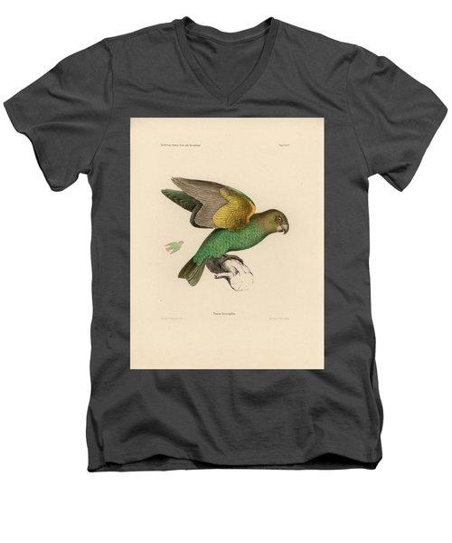 Brown-headed Parrot, Piocephalus Cryptoxanthus Men's V-Neck T-Shirt by J D L Franz Wagner