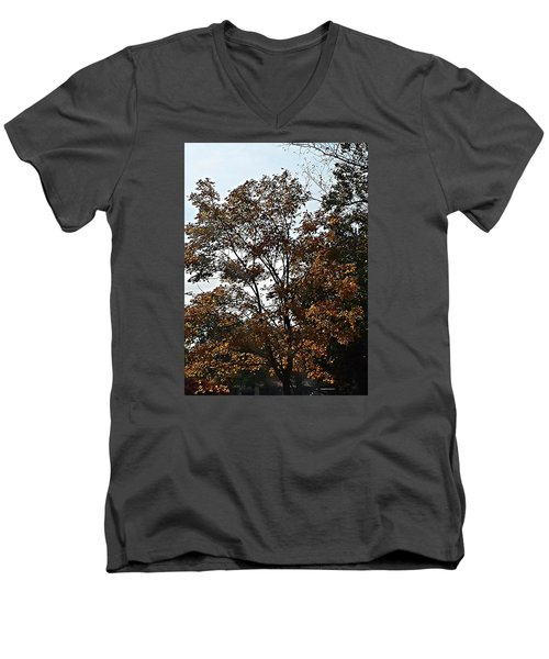 Brown Men's V-Neck T-Shirt by Jana E Provenzano
