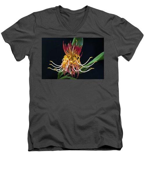 Brownea Macrophylla Tropical Flower Men's V-Neck T-Shirt