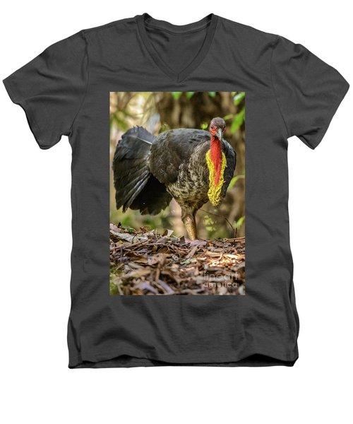 Brush Turkey Men's V-Neck T-Shirt