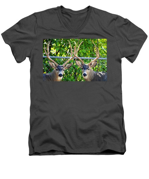 Buck Eyes Men's V-Neck T-Shirt