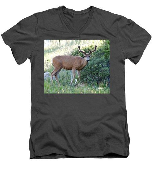 Buck In Velvet Men's V-Neck T-Shirt