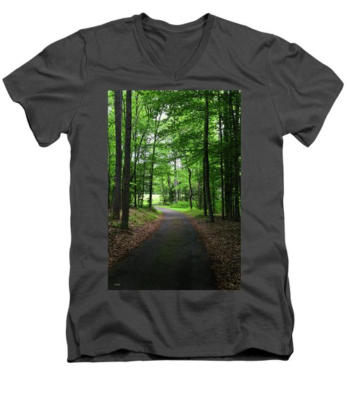 Buckner Farm Path Men's V-Neck T-Shirt