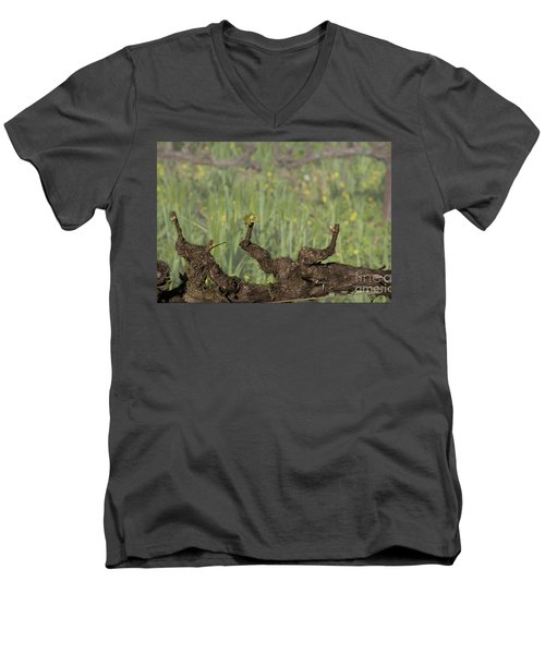 Budbreak In Carneros Men's V-Neck T-Shirt