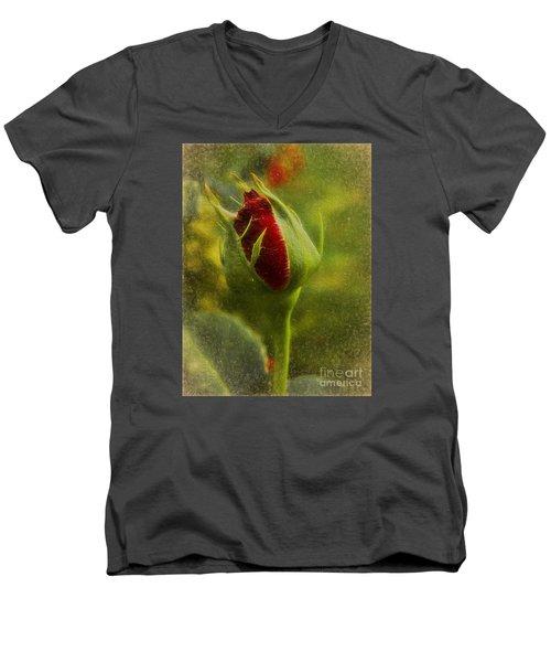 Budding Love Men's V-Neck T-Shirt