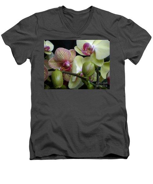 Budding Orchids  Men's V-Neck T-Shirt