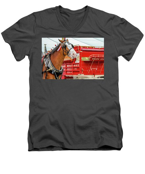 Budweiser Clydesdale In Full Dress Men's V-Neck T-Shirt