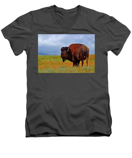 Men's V-Neck T-Shirt featuring the photograph Buffalo 006 by George Bostian