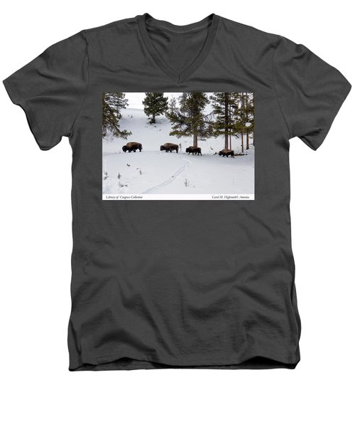 Buffaloes In Yellowstone National Park Men's V-Neck T-Shirt