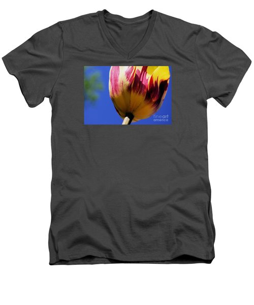 Bugs  Pov  Men's V-Neck T-Shirt by John S