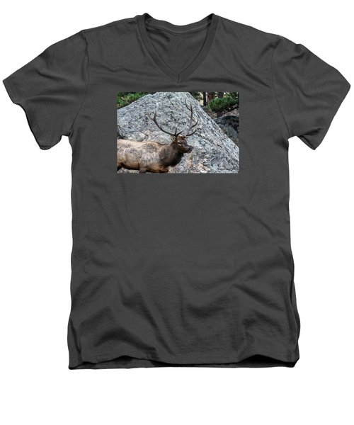 Men's V-Neck T-Shirt featuring the photograph Bull Elk Granite Moss Rock by Stephen  Johnson