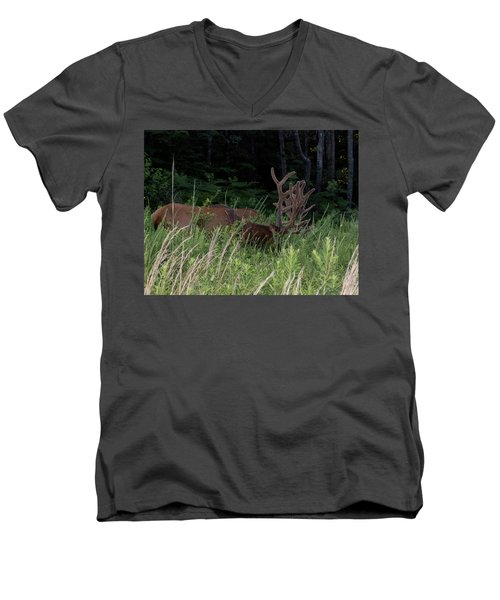 Bull Elk Grazing Men's V-Neck T-Shirt