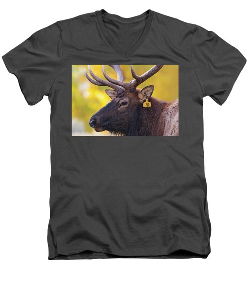 Bull Elk Number 10 Men's V-Neck T-Shirt