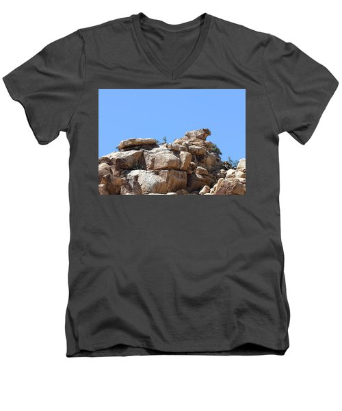 Men's V-Neck T-Shirt featuring the photograph Bull From Joshua Tree by Viktor Savchenko