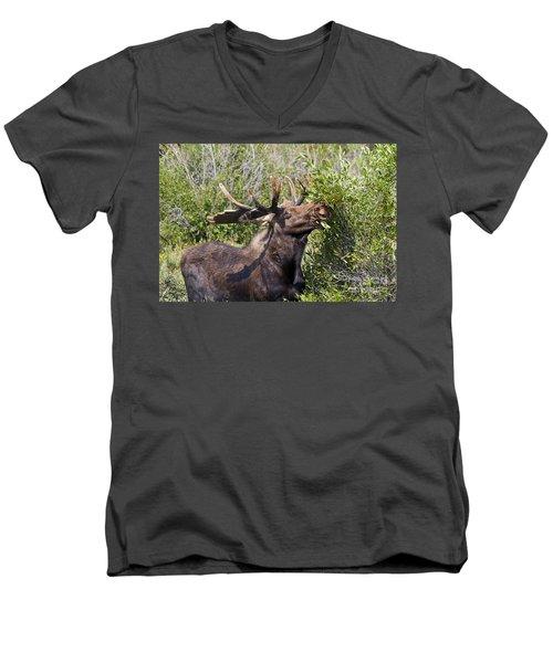 Bull Moose Men's V-Neck T-Shirt