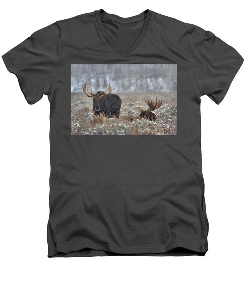 Men's V-Neck T-Shirt featuring the photograph Bull Moose Winter Wandering by Adam Jewell